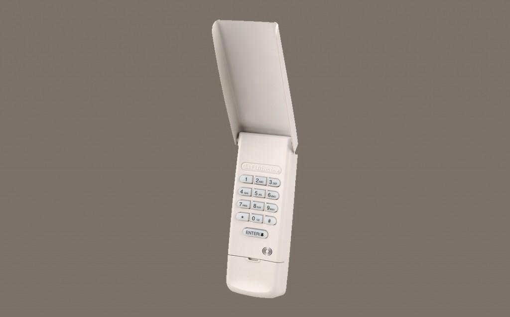 Wireless Keyless Entry System 377LM